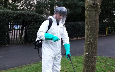 Environment sprayer