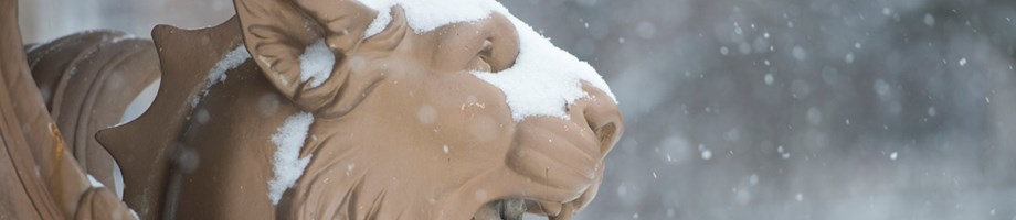 Town Hall Square lion in snow